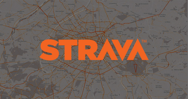 STRAVAINSIGHT-